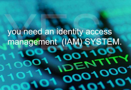 Identity access management (IAM) system