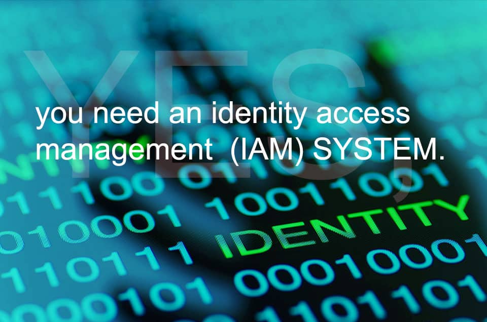 Identity access management (IAM) system
