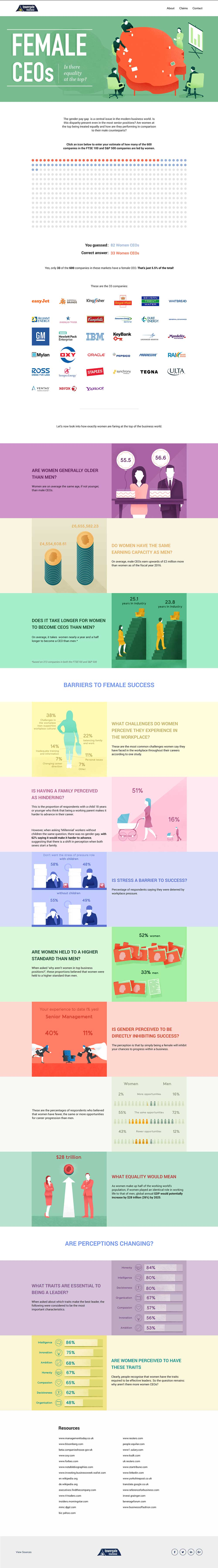 Female CEOs Is There Equality infographic