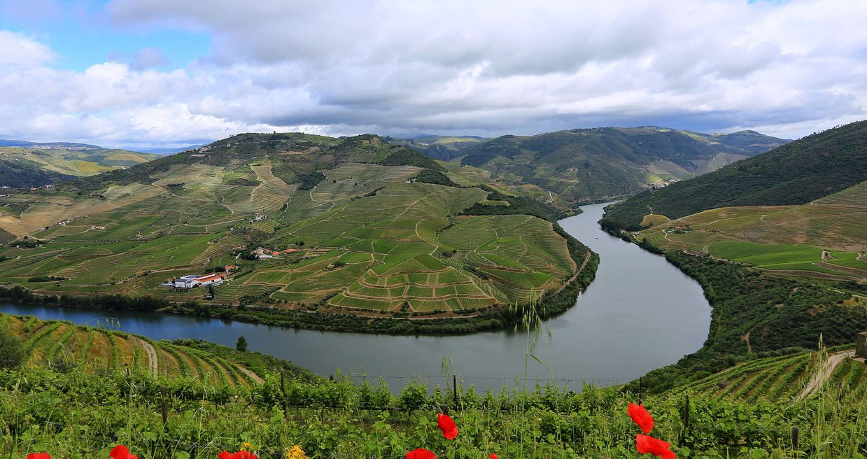 Douro Valley (Pinhao), Portugal