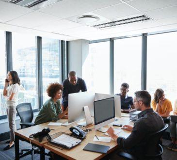 Business Team Working on Enterprise content managemen
