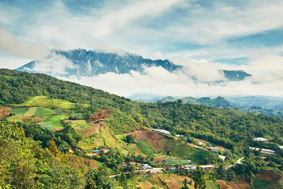 Kinabalu National Park Borneo Malaysia